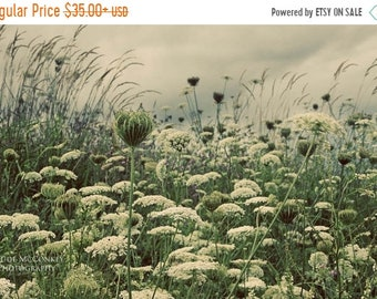25% Memorial Day Sale queen annes lace green botanical print clouds home decor
