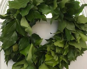 Bush Ivy Wreath- 20 inches