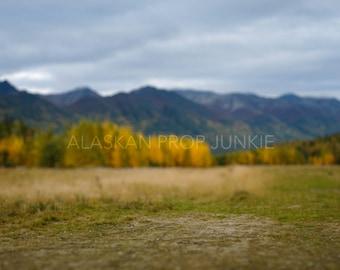 Alaska Fall Mountains Digital Backdrop