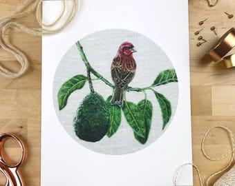 Purple Finch & Avocado - 8 x 10 Giclee Print - Orchard Birds 005