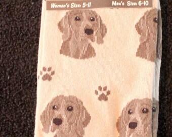 Weimaraner Dog Breed Lightweight Stretch Cotton Adult Socks