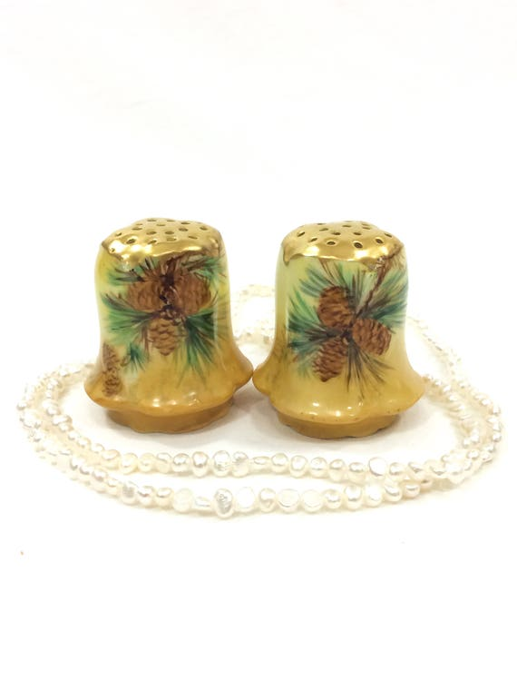 Hand Painted Salt Pepper Shakers, Pine Cones Gilded Tops, Holiday Country Decor, R C Bavaria / Rosenthal, Antique China / Porcelain