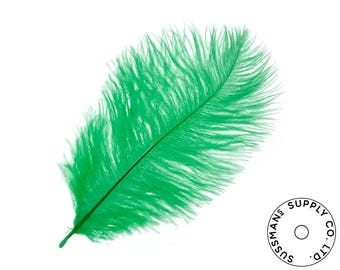 """Ostrich Feathers - Wholesale Wedding Feathers Ostrich Drab Plumes - Green - 10pcs (12-14"""")"""