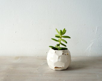 White and gold mini succulent planter. Faceted white and gold vessel no. 1. The Object Enthusiast. Mini planter. Windowsill planter.