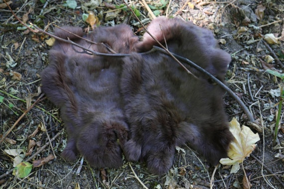Real Fur Rabbit Pelt, Brown, Natural Cruelty Free, Taxidermy, Leather, Viking, Norse, SCA, LARP, Armor, Reenactment, Medieval, Leg Wraps