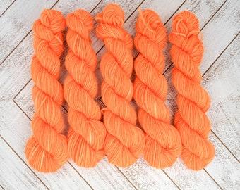 Fair Warning Mini - Hand Dyed Sock Yarn Heavy Fingering Weight 20g Mini Skein 92yds PlumpleBee Base 75/25 Superwash Merino/Nylon