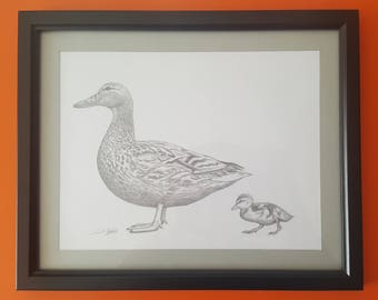 Framed Duck with Duckling