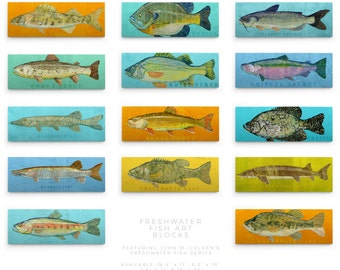 Fathers Day Gift for Him, Fishing Gifts, Husband Gifts for Dad, Freshwater Fish Art Series Large Art Block, Pick the Fish Print