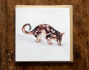 Quoll Greeting Card