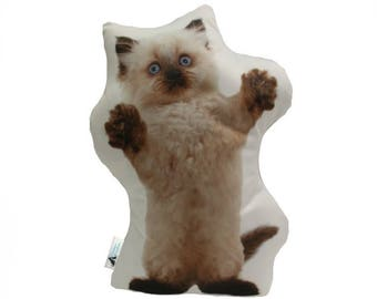 Playful Persian Shaped Cat Cushion, Add Lettering Underneath To Cutomize, Handmade By Creature Comforts, Cat Pillow, Animal Cushion