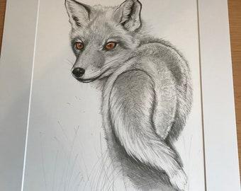 Original Artwork, Drawing of a Red Fox