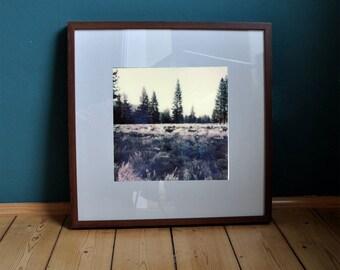 "Poster Print art print ""roe deer"" California/Yosemite/Landscape/photography/polaroid/Wall decoration/pressure/Photo/Natur"