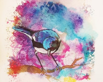 Blue Warbler-greeting card