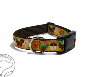 """Nuts for Squirrels on Brown Dog Collar - 1"""" (25mm) Wide - Martingale or Side Release - Choice of collar style and size - Fall Dog Collar"""