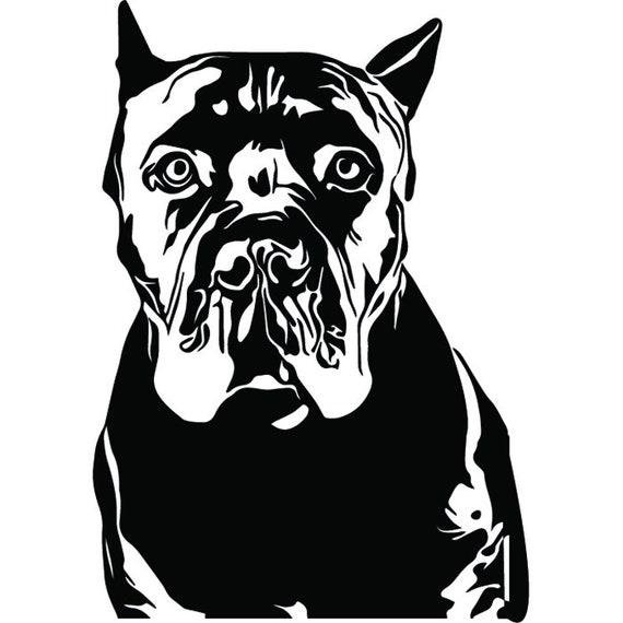 Cane Corso 2 Dog Breed Italian Mastiff K 9 Animal Pet Hound