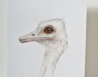 Big Bird IV