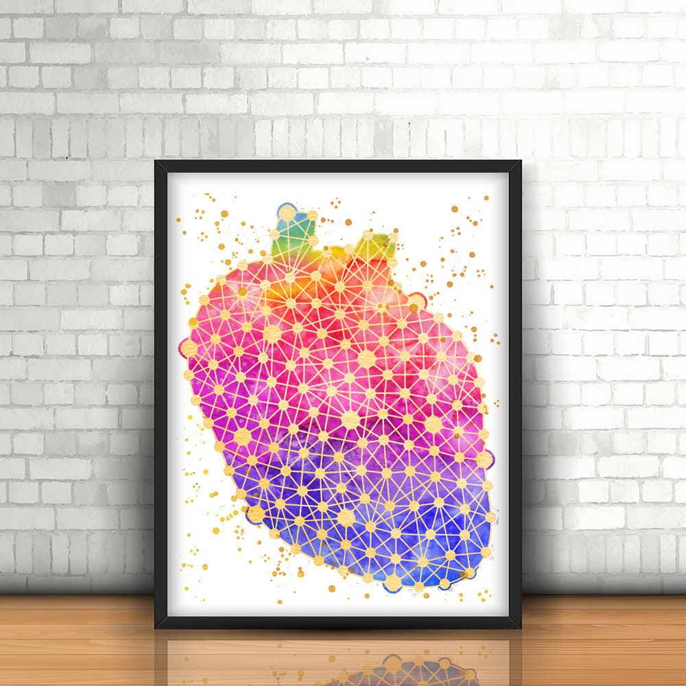 Heart Print, Medical art print Heart Poster Anatomy Poster Doctor ...