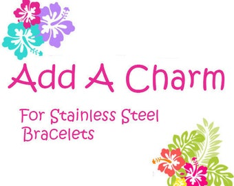 Add A Charm For Stainless Steel Charm Bracelet, Add On Dangle Charm, Stainless Steel Charm Bracelet Hypoallergenic
