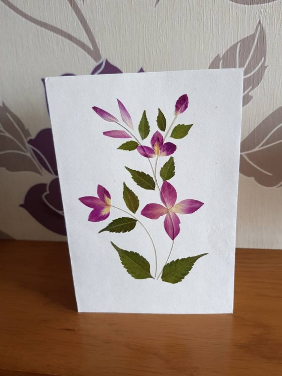 Real pressed flower greetings card purple plant design