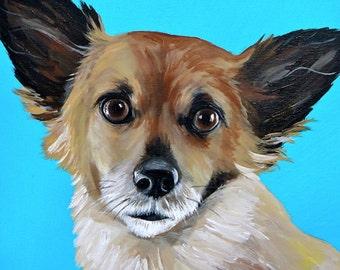 12x12 size canvas custom painted pet portrait size 12x12 canvas