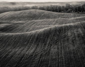 field, 8x10 fine art black & white photograph, nature