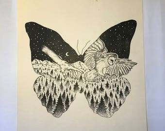 Butterfly and Owl Drawing