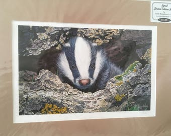 Signed Limited Edition Badger Mounted Print