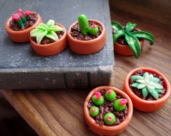 Plant Magnets: Cacti and Succulents handmade with Polymer Clay Set of 6