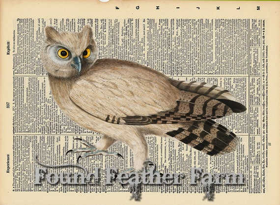"""Vintage Antique Dictionary Page with Antique Print """"Owl Six"""""""