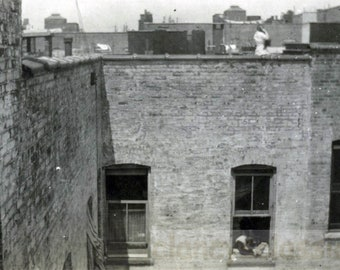 vintage photo 1914 Rear Window View New York City Apartments Roof