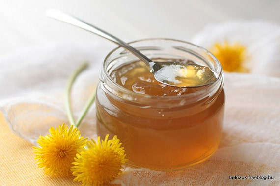 Dandelion Jelly 8oz - Tastes Like Honey!!! - TheSunshineJellyCo