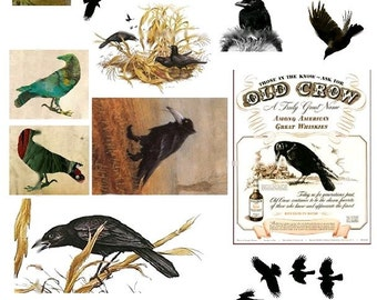 Black Crows and Ravens No. 5 - Digital Collage Sheet - Instant Download