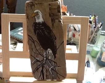 Eagle on driftwood