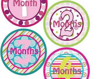 1-12 Monthly Bodysuit Stickers - Baby Shower or New Mom gift - For a baby girl 1-12 months - Boutique Chic