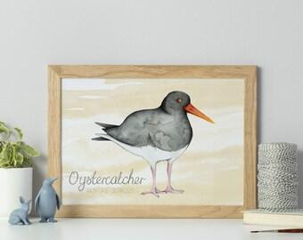 Bird print - oystercatcher bird art - wading bird print - watercolour bird drawing - watercolour print - sale