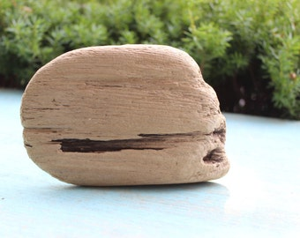 """Driftwood 7"""" piece for Crafting Supply, Jewelry Photo Prop & Coastal Home Decor"""