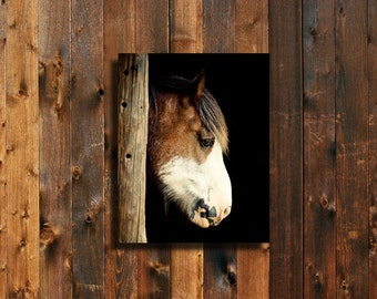 The Clydesdale 8x10 - 8x10 print - Clydesdale art - Horse art - Horse photography - Clydesdale photography - Horse decor