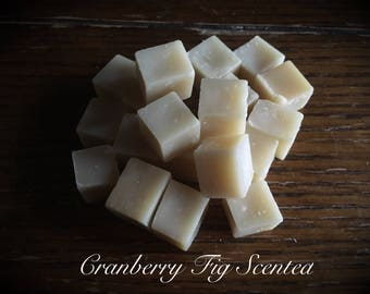 Cranberry Fig Scented Wipe Bits