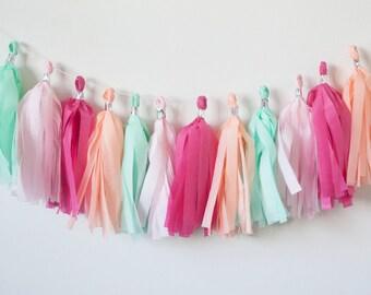 Mint, Pink, Boysenberry, Peach Tassel Garland (15)