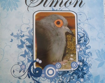 Children's book, The Story of Simon