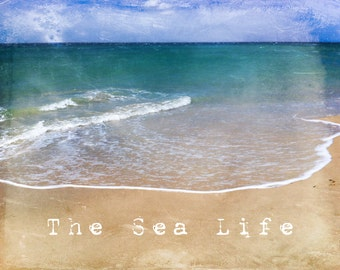 Instant Photo Download, Digital Download, Seaside Photography, Beach Photography, Ocean, Sea Decor, Coastal, The sea life, blue, turquoise