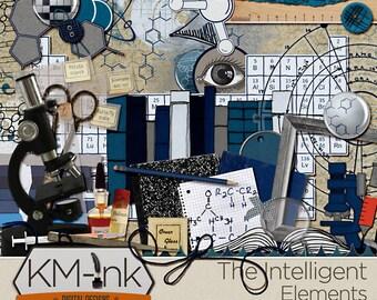 Digital Scrapbook Kit Elements: The Intelligent Collection