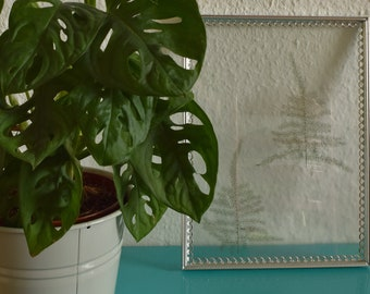 Ingelijste bloemen | Handgemaakt transparant fotolijst met geperste bloemen. Takjes heidebloemen.