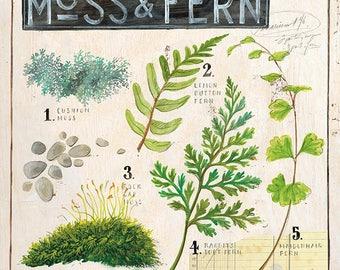Fern Print, Fern Illustration, Moss Illustration, Fern Decor, Fern Wall Art, Botanical Art, Botanical Illustration, Leaves Print