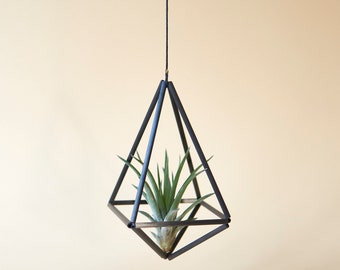 Luftpflanze mit Pflanzenhänger Himmeli Octahedron 02, geometrisch schwarz karbon design, halter terrarium, Pflanzenampel, Blumenampel OC02B+