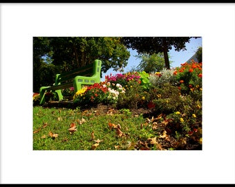 Green Bench with Flowers, Photographic Print