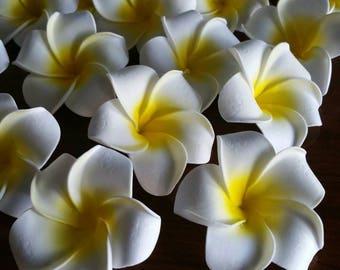 Lot of 25 plumeria blossoms