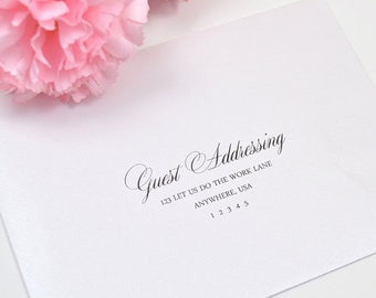 Guest Addressing and return addressing (optional)