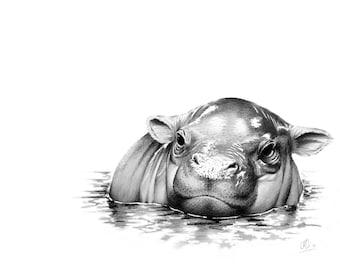 Pigmy Hippo Greetings Card