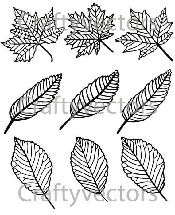 Leaves collection SVG file